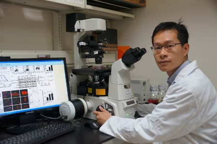 Taiwan Us Team Uses Vitamin E To Fight Cancer