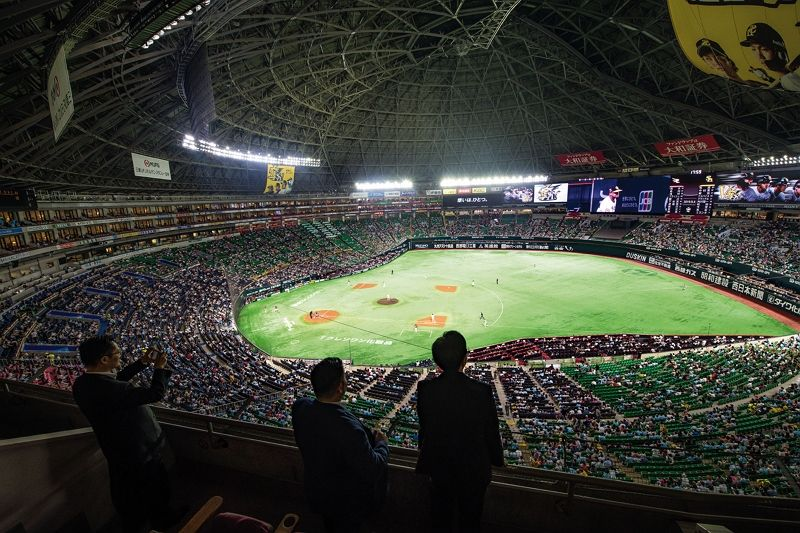 Playing Catch Across the Water: Taiwan and Japan's Shared Love of Baseball Photos - New Southbound Policy