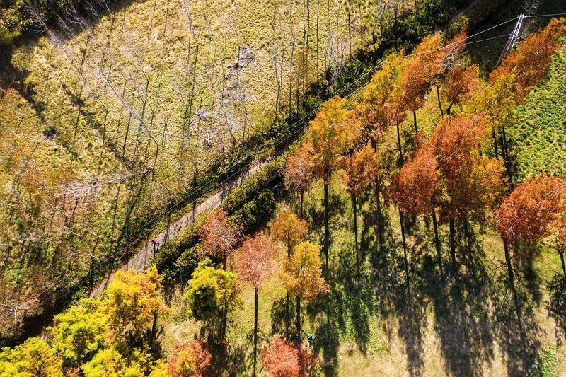Mountain Ridges, Autumn Leaves—Cycling Provincial Highway 7A Photos - New Southbound Policy