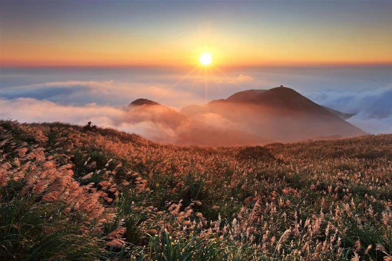 Yangmingshan National Park certified as world's first Urban Quiet Park Photos - New Southbound Policy