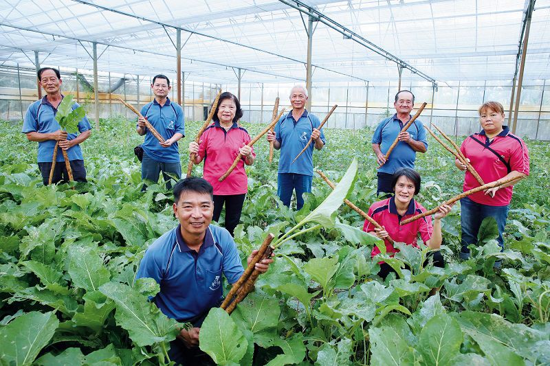 Revitalizing a Rural Community: Guilai, Home of Burdock Photos - New Southbound Policy