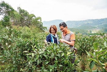 Denise Shih (left), Hugosam's general manager, and its president, Steve Chen (right), were key drivers behind the upscaling of Sun Moon Lake's black tea industry and the transformation of its tea processors into tea estates. (photo by Lin Min-hsuan)