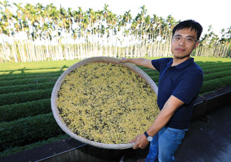 Tsai Fu-rong displays a herbal blend comprising oolong tea and sweet osmanthus at his family farm in Nantou. He is teaming up with local growers to produce organic products for the Vietnam market. (Photo by Chen Mei-ling)