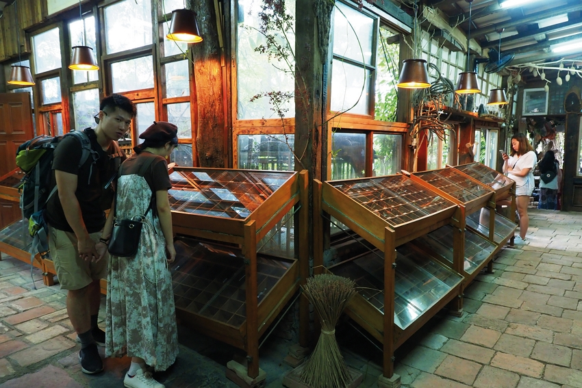 Visitors can't tear themselves away from the seeds in the display cases.