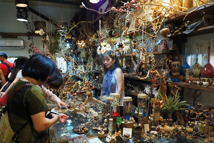 The deft hands of Zhao Yingling have turned seeds into a dazzling array of artistic and decorative products.
