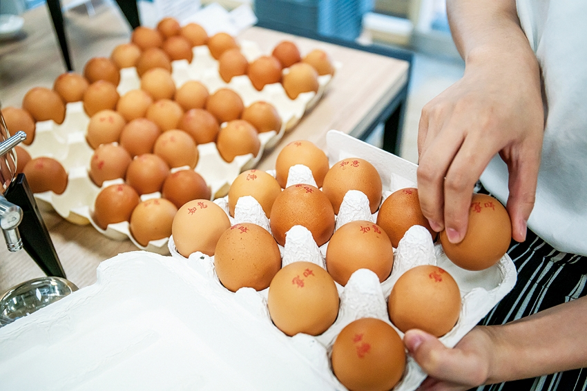Instead of plastic, we can choose reusable paper egg boxes, which are better for the environment.