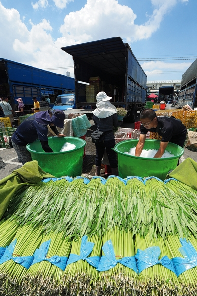 Once buyers have purchased enough produce to meet their needs, the vegetables are packed to keep them cool and trucked to destinations across Taiwan.