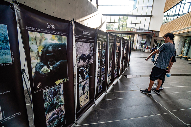 Jane Goodall's wildlife conservation achievements were showcased in an exhibit outside the Tang Prize Masters' Forum for Sustainable Development at National Tsing Hua University. (photo by Lin Min-hsuan)